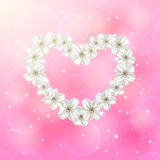 Flower heart on pink background Royalty Free Stock Images