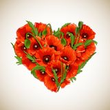 Flower heart of red poppies. Vector illustration Stock Image