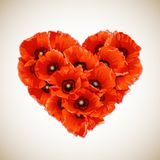 Flower heart of red poppies. Stock Photography