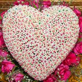 flower heart shaped Royalty Free Stock Photography