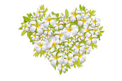 Flower Heart, Valentine Day Stock Photo
