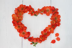 Flower heart on wooden background. Valentin day or wedding concept. Stock Photography