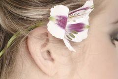Flower in her hair. Lily in her hair girl Royalty Free Stock Photos