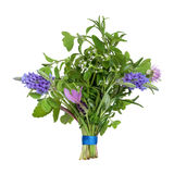 Flower and Herb Leaf Posy. Herb leaf and flower posy  of lavender varieties, oregano, chive, rosemary, lemon balm,  eyebright and thyme varieties isolated over Stock Photo