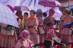Flower Hmong women's group. Group of women at Bac Ha market in conversation. The market is the single point of reunion of these ethnic groups scattered in the Stock Photo