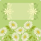 Flower holiday background Stock Images