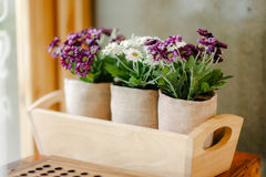 Flower home  decoration Royalty Free Stock Images