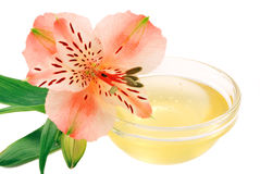 Flower honey. Alstroemeria and a bowl with honey isolated on white background Royalty Free Stock Photography