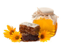 Flower honey Royalty Free Stock Image