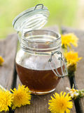 Flower honey Stock Photography
