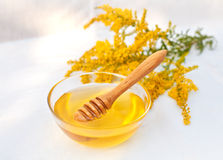 Flower honey. Honey in glass dish with wood stick stock image