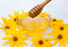 Flower honey. Honey in glass dish with wood stick stock photo