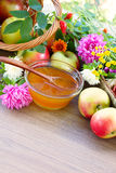 Flower honey, apples and garden flowers. Free space for text Royalty Free Stock Image