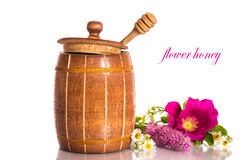 Flower honey Stock Image