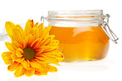 Flower and honey jar Stock Photography