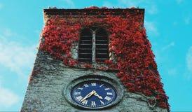 Flower& x27 ; horloge de s images libres de droits