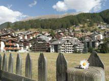 Flower. And houses in zermatt Stock Photo
