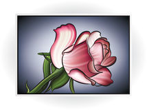 Flower Icon Stock Photography