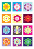 Flower icon. Multiple flower icon in different colors Stock Photo