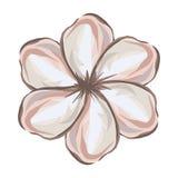 Flower icon image Stock Image