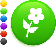 Flower icon on round internet button Stock Images