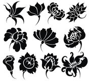 Flower icon set Royalty Free Stock Image