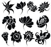 Flower icon set Royalty Free Stock Image