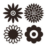 Flower icon set - gerbera, chrysanthemum, sunflower and daisy Stock Image