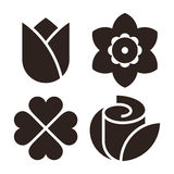 Flower icon set - tulip, narcissus, clover and rose Stock Photography