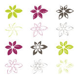 Flower icons Royalty Free Stock Image