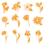 Flower Icons Stock Photo