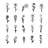 Flower icons for pattern with white background Royalty Free Stock Image