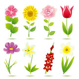 Flower icons set Royalty Free Stock Photo