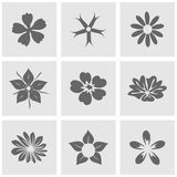 Flower icons set great for any use. Vector EPS10. Royalty Free Stock Image