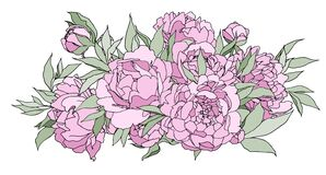 Flower illustration: flower arrangement. Peonies in a hand sketch. Perfect for invitations, greeting cards, tattoos