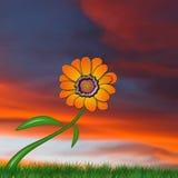 Flower Illustration design Stock Photo