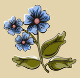 Flower illustration series Royalty Free Stock Image