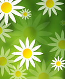 Flower ilustration green nature yellow backgroun. Nature Stock Images