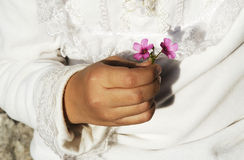 Flower In Hand Stock Image