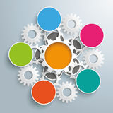 Flower Infographic White Gears Centre Royalty Free Stock Photography
