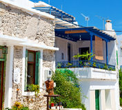 Flower   in the isle of greece antorini europe old house and whi. Isle of       greece antorini europe old house and white color Royalty Free Stock Photo