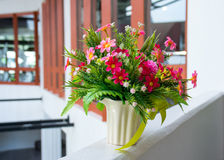 Flower in jar Royalty Free Stock Photo