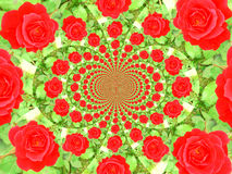 Flower kaleidoscope Royalty Free Stock Photography