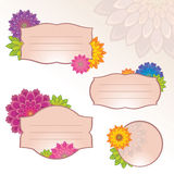 Flower label sticker tag set Royalty Free Stock Photos