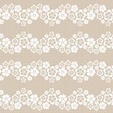 Flower lace background. Royalty Free Stock Image