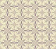 Flower laces. Vector illustration of floral patterns Royalty Free Stock Photos
