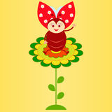 Flower and Ladybug Illustration. Green flower and ladybug illustration, ladybug cartoon, smiling ladybug, insect illustration, green leaves, white flowers Royalty Free Stock Photography