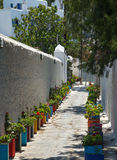 Flower lane Mykonos Stock Images