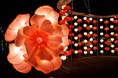Flower lantern stock images