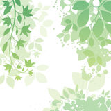 Flower and Leaf Background royalty free illustration